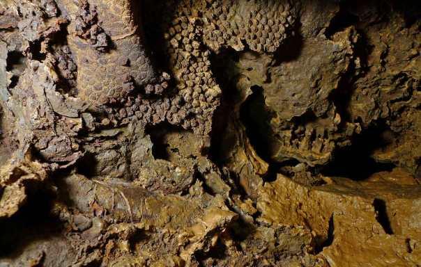 150613Hardthöhle-Tiefe904b