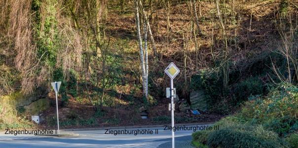 ziegenburg-2bw2